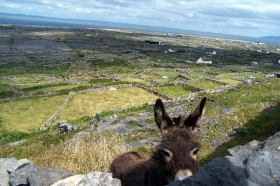 Aran Islands & Along the Wild Atlantic Way